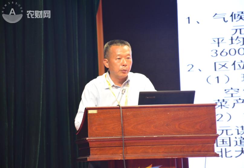 云南思农蔬菜种业发展有限责任公司董事长杨长楷.JPG.png