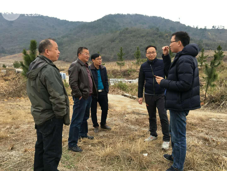 连州水晶梨种植面积已超5万亩,政府与农财网共探未来
