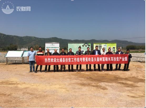 图五、大埔县扶贫工作组在富硒木耳示范基地合影留念.png