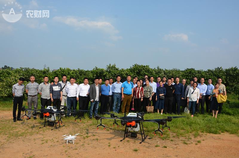60秒識別200畝果園!AI助力大疆無人機成果園植保新選擇
