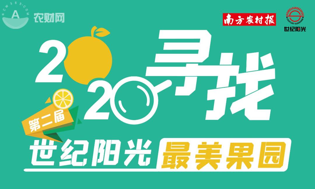 """结果揭晓!线上投票22万,""""2020寻找世纪阳最美果园""""花落谁家"""