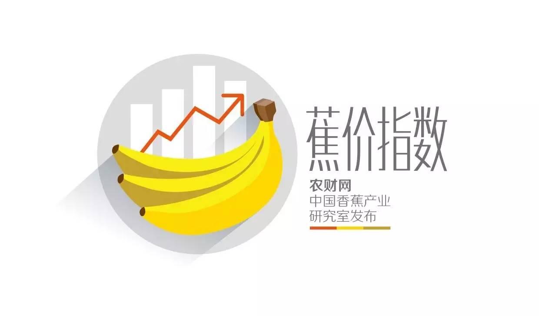 【农财网·蕉价】海南香蕉初市5元/公斤  广东受阴雨影响出
