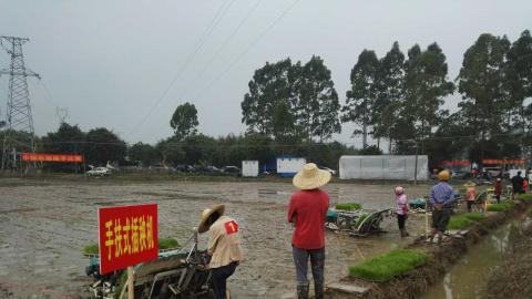 广东省农科院创新科技服务形式 助力春耕生产