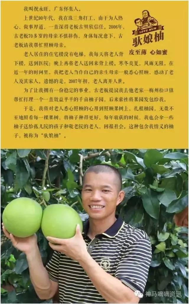 驮娘柚:有孝心的人,会凭着良心种植农产品