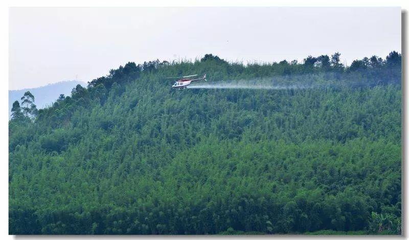 2018一定不能错过的林业技术交流会,风神炮机、直升机防虫除草,你想看的都在这