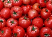 痛心!农户番茄卖不上价倒进江中,顾客吃到嘴却两三块一斤?是什么造成了供求信息不对称?