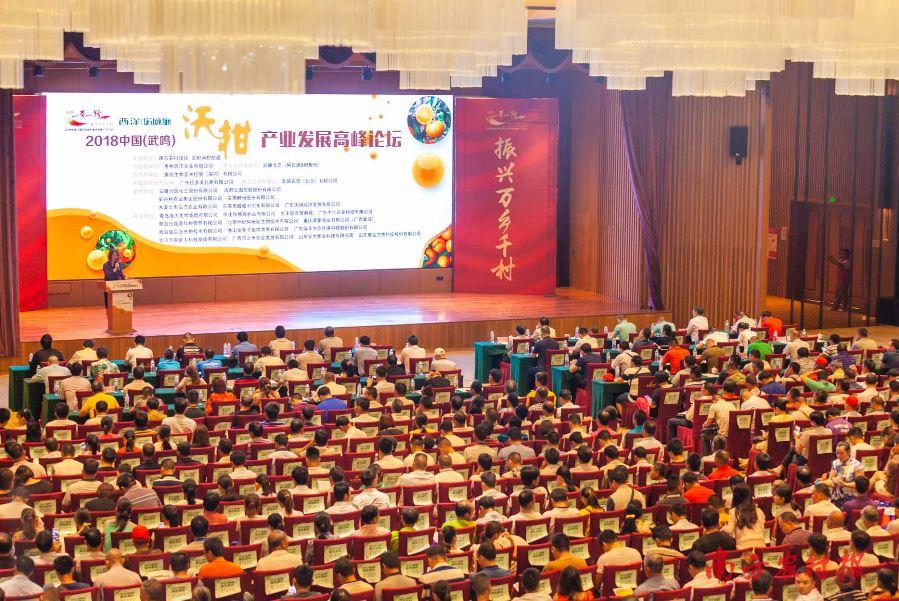 千人沃柑论坛今日开幕!中国柑橘全产业链博览会首次落地武鸣!