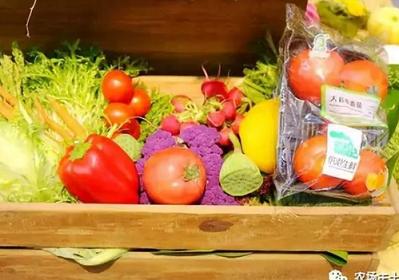 """""""供港蔬菜""""人人都能种,只是人人都愿意买吗?"""